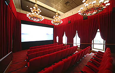 custom home theater design - Home Theater Design Group